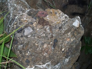 Breccia forms when sand, gravel and stones, sometimes also containing bones, fall down an opening into a cave. It is then cemented together into a concrete-like substance by calcite-rich water